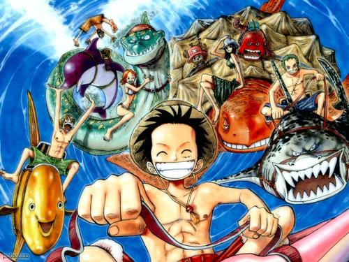 Serie One Piece Portada 01